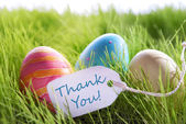 Happy Easter Background With Colorful Eggs And Label With Text Thank You — Zdjęcie stockowe