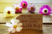 Sunny Label Life Quote Its The Little Things That Make Life Big With Cosmea Blossoms — Stock Photo