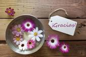 Silver Bowl With Cosmea Blossoms With Spanish Text Gracias — Stock Photo