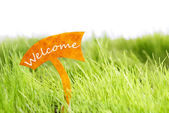 Label With Welcome On Green Grass — Stock Photo