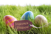 Happy Easter Background With Colorful Eggs And Label With French Text Joyeuses Paques — 图库照片