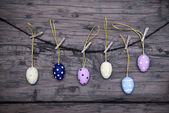 Many Easter Eggs Hanging On Line With Frame — Stock Photo
