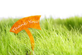 Label With Thank You On Green Grass — Stock Photo