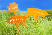 Three Labels With French Merci Which Means Thank You And Blue Sky — Stock Photo
