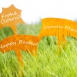 Three Labels With Happy Easter In Different Languages On Grass — Stock Photo #63886743