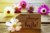 Sunny Label Life Quote There Is Always A Reason To Smile With Cosmea Blossoms — Photo