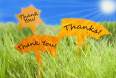 Three Labels With Thank You And Thanks And Blue Sky And Sun — Stock Photo
