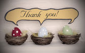 Spotlight To Three Colorful Easter Eggs With Comic Speech Balloon Thank You — Stock Photo