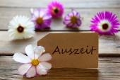Label With German Text Auszeit With Cosmea Blossoms — Stock Photo