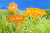 Three Labels With Happy Easter And Blue Sky — Stock Photo