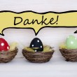 Three Colorful Easter Eggs With Comic Speech Balloon With Danke Means Thank You — Stock Photo #65679941
