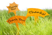 Three Labels With Thank You And Thanks On Grass — Stock Photo