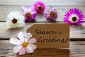 Label With Text Seasons Greetings With Cosmea Blossoms — Stock fotografie