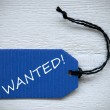 Blue Label With English Text Wanted — Stock Photo #68564991