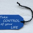 Blue Label With English Life Quote Life Control — Stock Photo #68939743