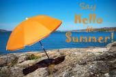 Swedish Coast With Say Hello To Summer — Stock Photo
