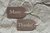 Two Brown Labels With Many Thanks Paper Background — Stock Photo