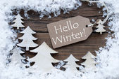 Label Christmas Trees And Snow Hello Winter — Stock Photo