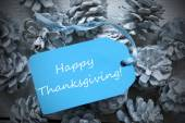 Light Blue Label On Fir Cones With Happy Thanksgiving — Stock Photo