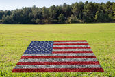 Protection of environment in usa  — Stock Photo