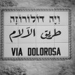 Street sign Via Dolorosa — Stock Photo #62859867