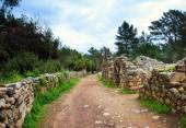 Die antiken Ruinen von Olympos — Stockfoto