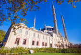 Selimiye Mosque. The UNESCO World Heritage Site Of The Selimiye Mosque, Built By Mimar Sinan In 1575 — Stock Photo
