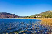 Abant Lake — Stock Photo
