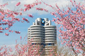 Tower building BMW head office framed pink spring flowering branches — Stock Photo