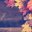 Autumn Fall Thanksgiving Background with Retro Vintage Filter — Stock Photo #52311687