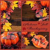 Autumn Fall Thanksgiving Collage — Foto Stock