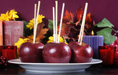 Happy Halloween Toffee Caramel Candy Apples — Stock Photo