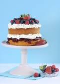Sponge Layer Cake with fresh berries and whipped cream — Stock Photo