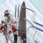 Roast Turkey Carving Fork, Knife and Utensil Set — Stock Photo #56953649