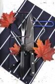Roast Turkey Carving Fork, Knife and Utensil Set — Stock Photo