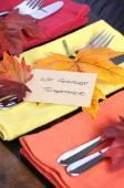 Thanksgiving Table Setting — Stock Photo