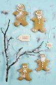 Festive holiday Christmas baking — Stock Photo