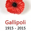 Australia Gallipoli Centenary 1915 - 2015 — Stock Photo #60632669