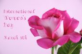International Womens Day greeting with pink rose — Stock Photo