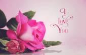 Happy Valentines Day greeting. — Stock Photo