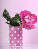 Beautiful pink rose gift in polka dot coffee cup — Stock Photo