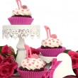Pink cupcakes with high heel shoes — Stock Photo #64880081