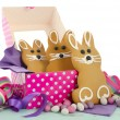 Easter Bunny Gingerbread Cookies — Stock Photo #67387697