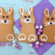 Easter Bunny Gingerbread Cookies — Stock Photo #67387767