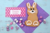 Easter Bunny Gingerbread Cookies — Fotografia Stock