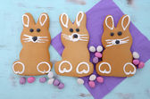 Easter Bunny Gingerbread Cookies — Stock Photo