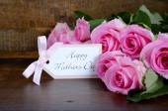 Vintage Pink Roses on Dark Wood Background.  — Stock Photo