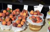 Fresh Michigan Peaches — Stock Photo