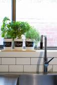 Pots of herbs on contemporary kitchen window sill vertical — ストック写真