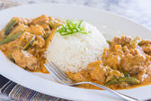 Chicken Panang Curry — Stockfoto